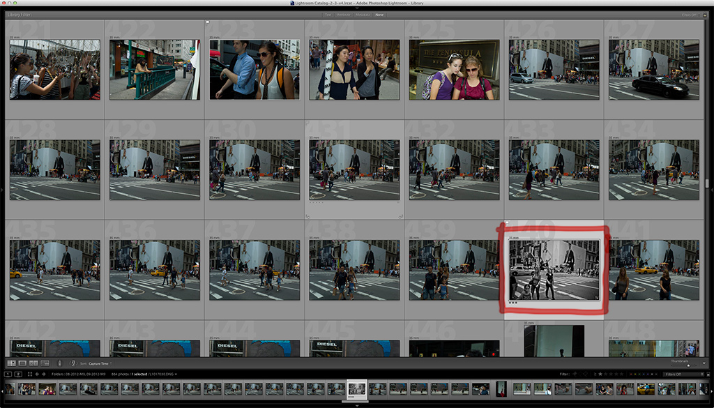 hartel contact sheet Massimo Dutti 5th Ave Coming Soon