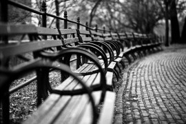 Benches at the Morris Jumel Mansion, Washington Heights